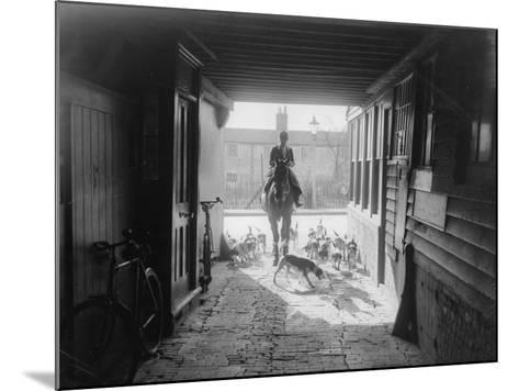 Beagle Hunt--Mounted Photographic Print