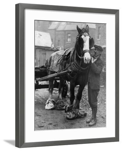Horse Shoes--Framed Art Print