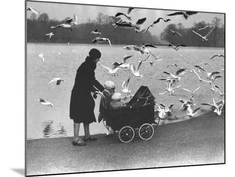 Feed the Birds--Mounted Photographic Print