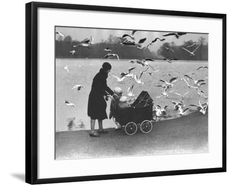 Feed the Birds--Framed Art Print