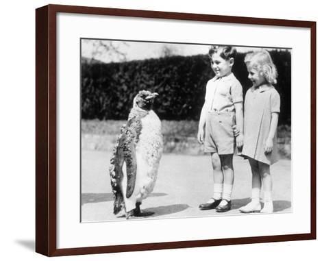 Penguin Parade--Framed Art Print