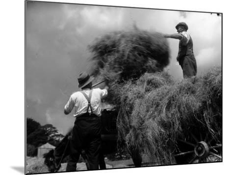 Haymaking-Chaloner Woods-Mounted Photographic Print