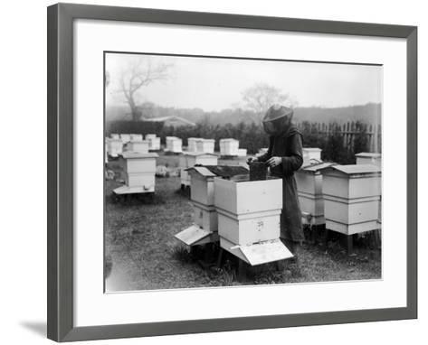 Beekeeping--Framed Art Print