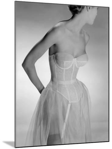 Corselet-Chaloner Woods-Mounted Photographic Print