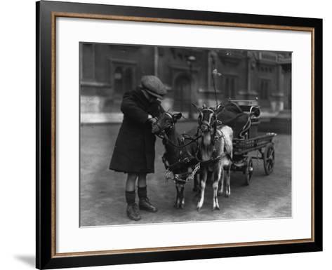 Goat Cart--Framed Art Print