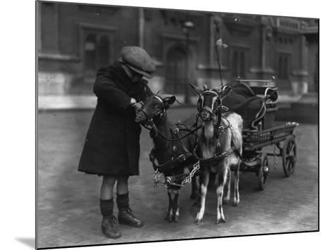 Goat Cart--Mounted Photographic Print