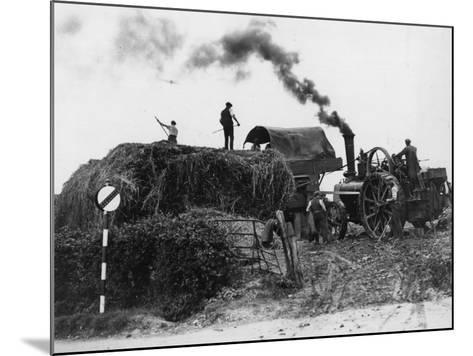 Making Hay--Mounted Photographic Print