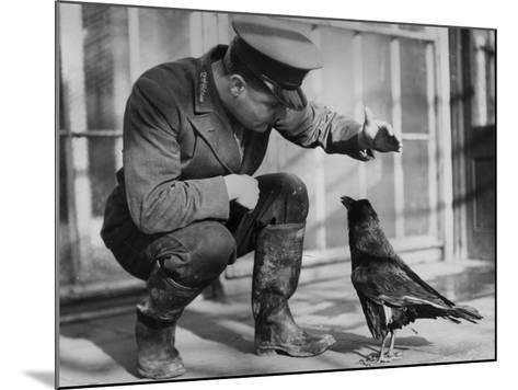 Raven--Mounted Photographic Print