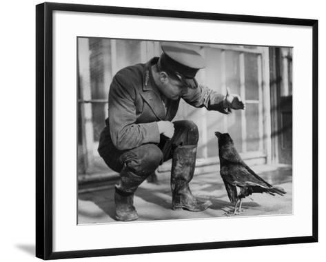 Raven--Framed Art Print