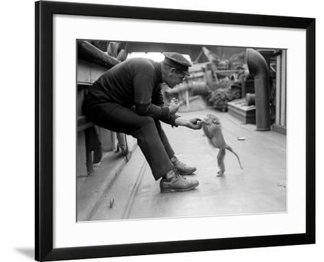 Pet Monkey--Framed Art Print