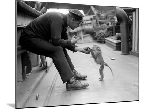 Pet Monkey--Mounted Photographic Print