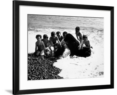 Sea Dogs--Framed Art Print