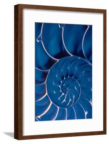 Cross-Section of Blue Nautilus Shell-Comstock-Framed Art Print