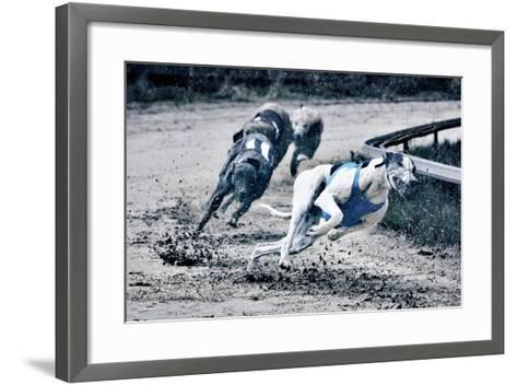 Greyhound Race-Klaus Vedfelt-Framed Art Print
