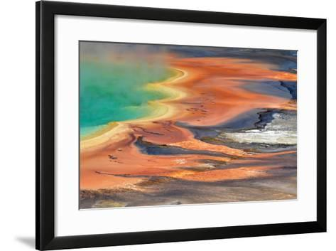 Grand Prismatic Spring Runoff-Photo by Mark Willocks-Framed Art Print