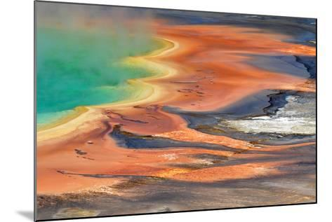 Grand Prismatic Spring Runoff-Photo by Mark Willocks-Mounted Photographic Print