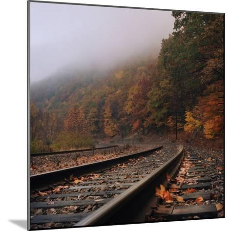 Train Tracks, Fall and Fog-Owen Luther-Mounted Photographic Print