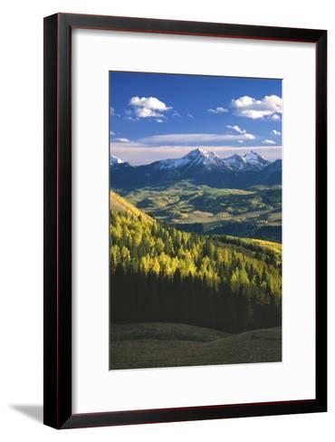 Aspens in Fall Last Dollar Road Telluride Colorado-Scott Cramer-Framed Art Print
