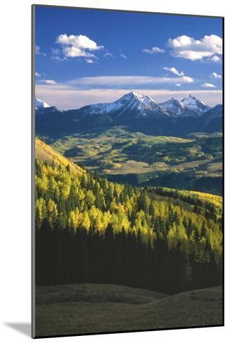 Aspens in Fall Last Dollar Road Telluride Colorado-Scott Cramer-Mounted Photographic Print