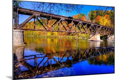 Newaygo State Park - Explored!-Michelle Leale/Total Photography LLC-Mounted Photographic Print