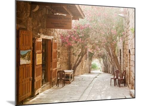 Shops in a Narrow Street in the Souq at Byblos, a Small Coastal Town in Lebanon-Cultura Travel/Philip Lee Harvey-Mounted Photographic Print