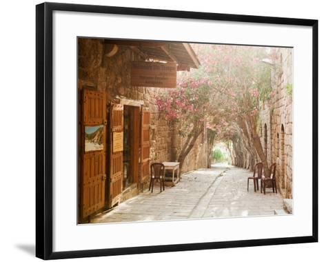Shops in a Narrow Street in the Souq at Byblos, a Small Coastal Town in Lebanon-Cultura Travel/Philip Lee Harvey-Framed Art Print
