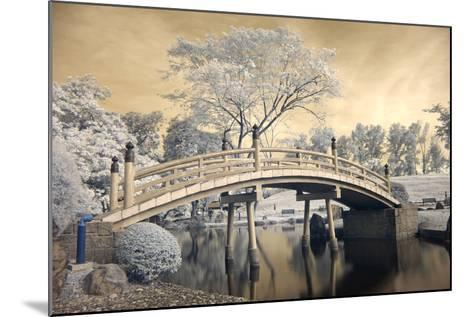 Japanese Style Bridge and Gardens in Singapore-Cheoh Wee Keat-Mounted Photographic Print