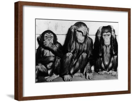 Three Wise Monkeys-Keystone-Framed Art Print
