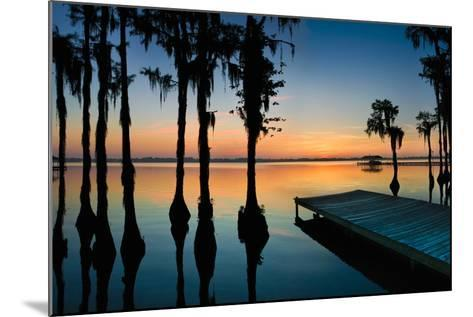 Dock and Bald Cypress Trees at White Lake NC-Apostrophe Productions-Mounted Photographic Print