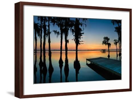 Dock and Bald Cypress Trees at White Lake NC-Apostrophe Productions-Framed Art Print