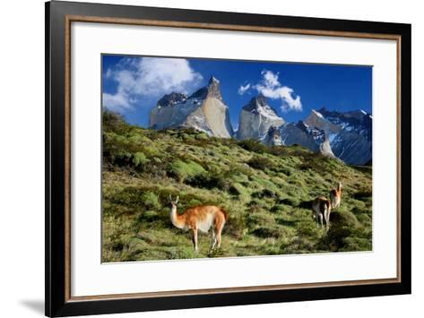 Cuernos Del Paine-Tan Yilmaz-Framed Art Print