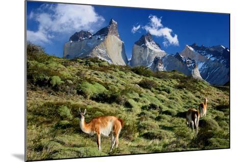 Cuernos Del Paine-Tan Yilmaz-Mounted Photographic Print
