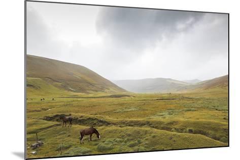 Ruta De Los Volcanes. Ecuador-Luis Davilla-Mounted Photographic Print