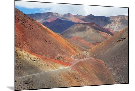 Haleakala National Park-M Swiet Productions-Mounted Photographic Print