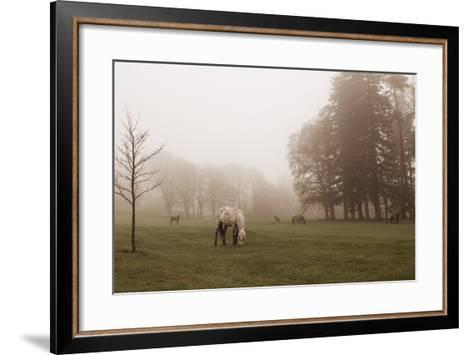 Dartmoor Ponies in Mist-Nichola Sarah-Framed Art Print
