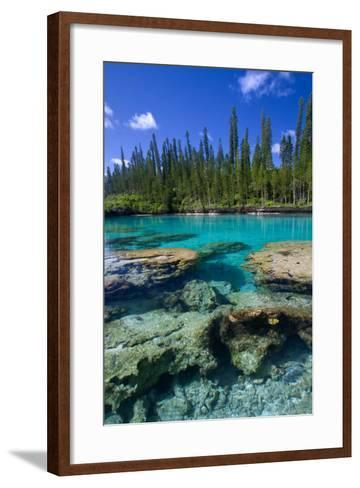 Coral and Crystal Water-Mako photo-Framed Art Print