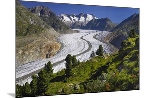 Aletsch Glaciers in Swiss Alps-Cornelia Doerr-Mounted Photographic Print