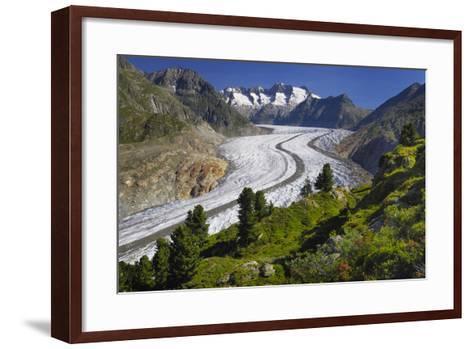Aletsch Glaciers in Swiss Alps-Cornelia Doerr-Framed Art Print