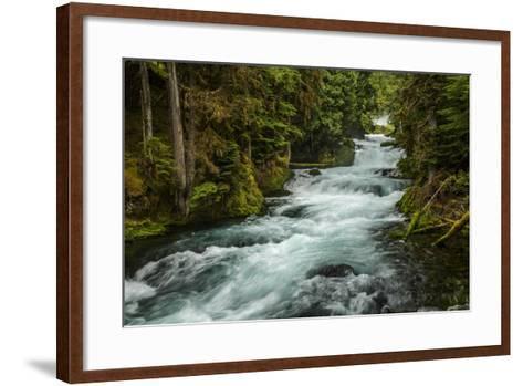 Sahale Falls in Central Oregon-Bob Pool-Framed Art Print