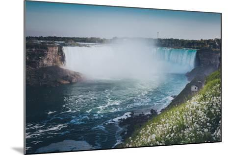 Niagara Falls with Flower and Dandelion-d3sign-Mounted Photographic Print