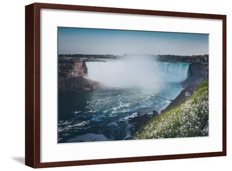 Niagara Falls with Flower and Dandelion-d3sign-Framed Art Print