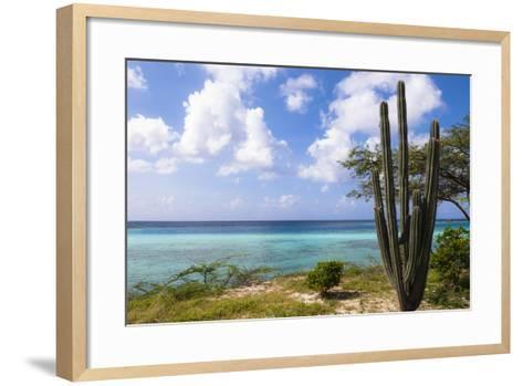 Scenic with Cactus by Coast, Mangel Halto Beach, Aruba, Lesser Antilles, Caribbean-Alberto Biscaro-Framed Art Print