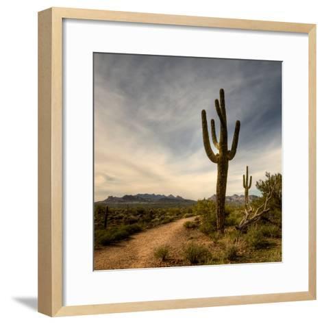 Saguaro-Merilee Phillips-Framed Art Print