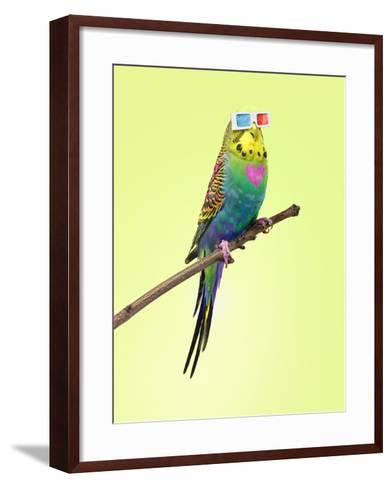 Neon Rainbow Coloured Budgie with 3D Glasses-Michael Blann-Framed Art Print