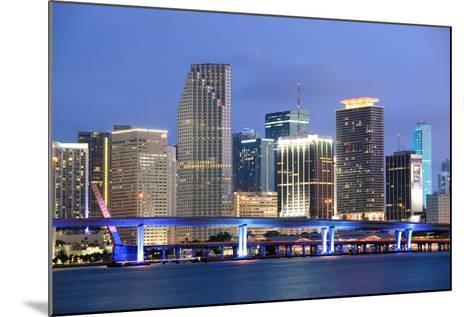 Miami, Florida-Jumper-Mounted Photographic Print