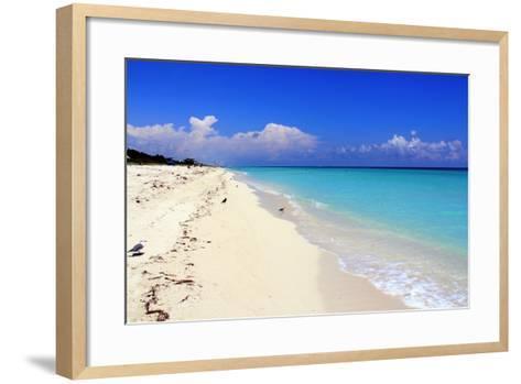 Summer-Luiz Felipe Castro-Framed Art Print