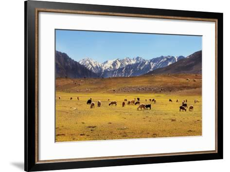 Shandoor Top-Yasir Nisar, Pakistan-Framed Art Print