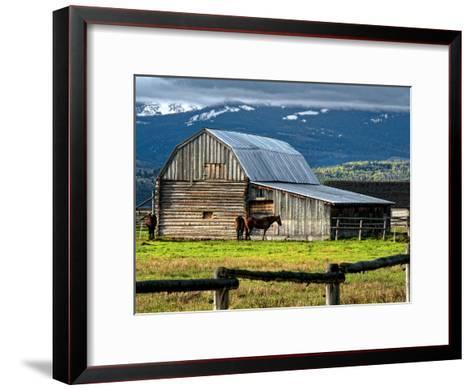 Horse and Barn on Mormon Row, Grand Teton National Park, Wyoming, Usa, May 2008-Bill Wight-Framed Art Print
