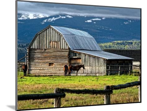 Horse and Barn on Mormon Row, Grand Teton National Park, Wyoming, Usa, May 2008-Bill Wight-Mounted Photographic Print