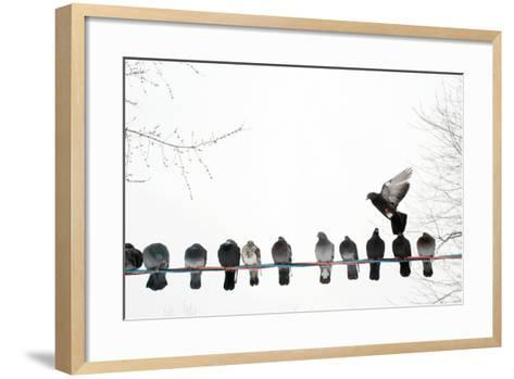 Row of Pigeons on Wire-Ernest McLeod-Framed Art Print